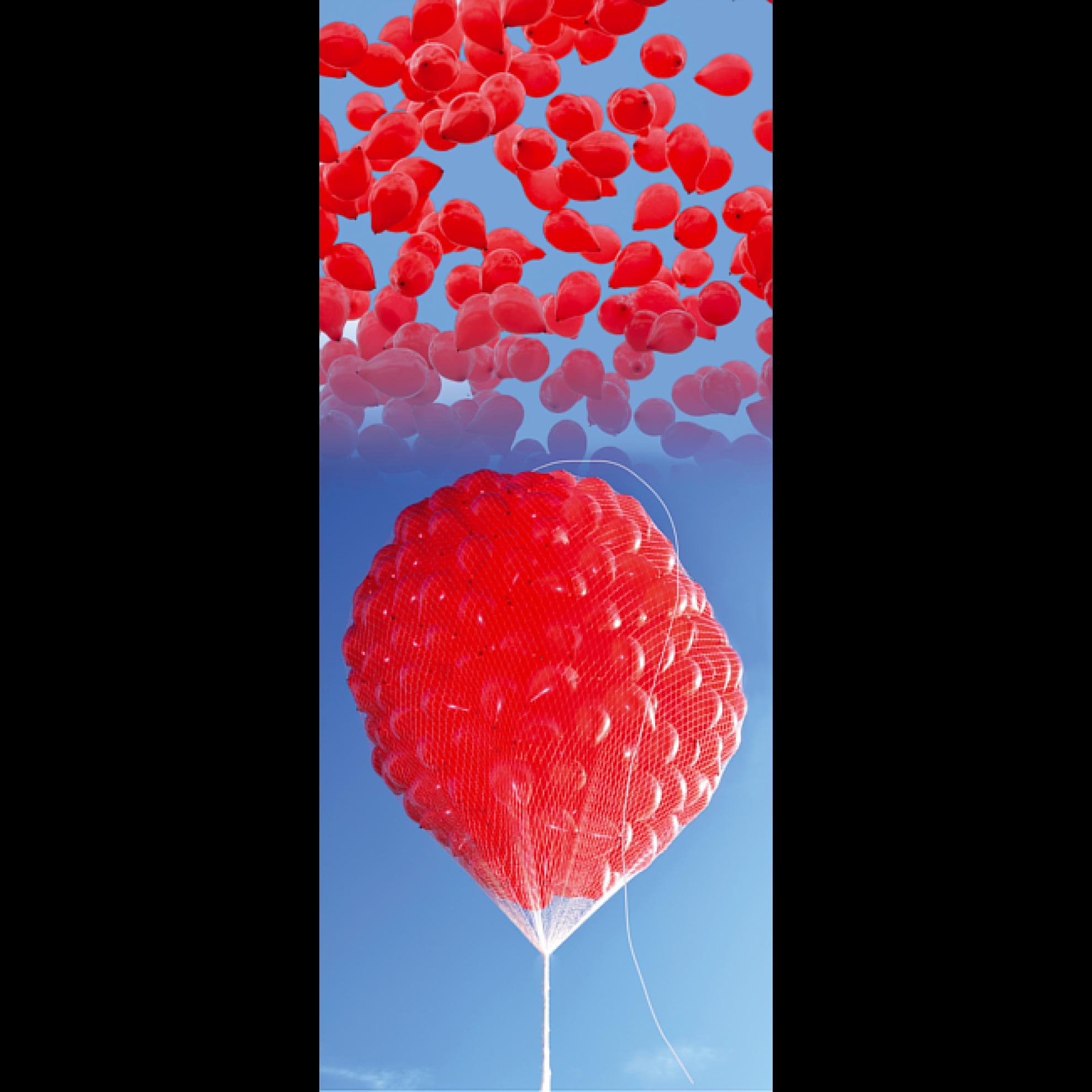 luftballonnetz massenstartnetz f r bis zu 1000 luftballons. Black Bedroom Furniture Sets. Home Design Ideas